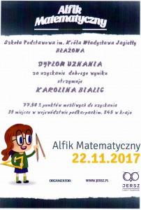 dyplom - K. Bialic