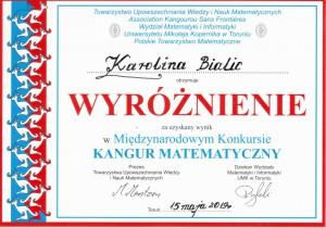 wyróżnienie - K. Bialic