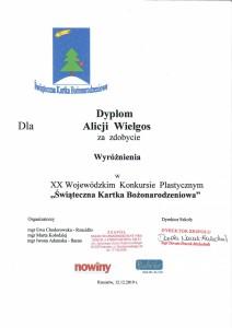 dyplom - Alicja Wielgos